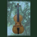 バイオリン弾き比べ