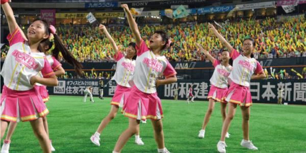 ハニーズダンス生は福岡ソフトバンクホークス公式戦など会場を熱く可愛く盛り上げます![写真提供:オールスポーツコミュニティ]